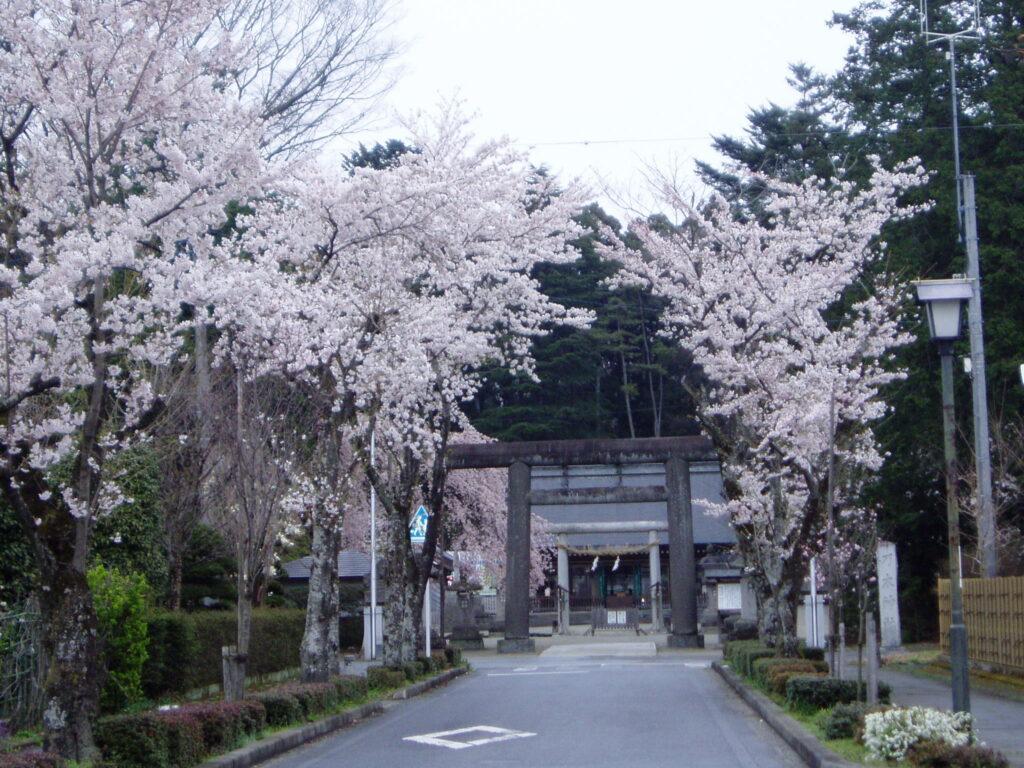栃木県那須塩原市 | 西那須野観光協会